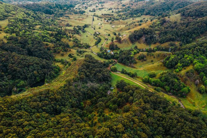 The road to Currumbin Valley Rock Pools, Australia