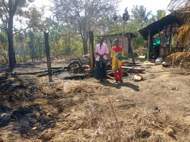The cowshed of Saju was gutted at Chittikodige in N R Pura.