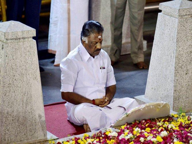 Panneerselvam sits alone in meditation at Jaya's burial site