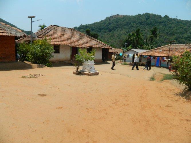A Kunbi hamlet at Patagudi inside Kali Tiger Reserve, Dandeli. dh photo/Anitha Pailoor