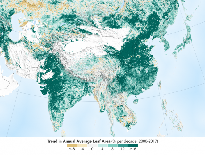 Trend in Annual Average Leaf Area. Credits: NASA Earth Observatory