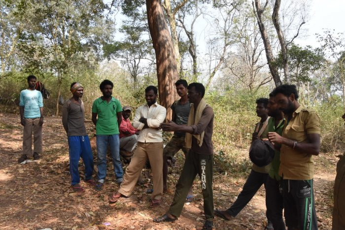 Forest dwellers in Nagarhole. Photo: Pavan Kumar H