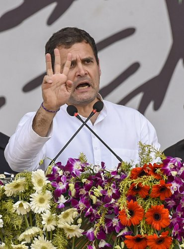 Congress President Rahul Gandhi. PTI file photo