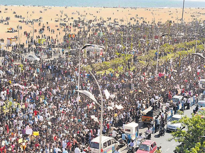 Despite lathicharge Jallikattu stir goes on