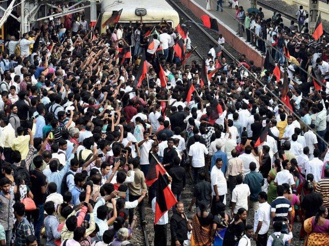 Jallikattu: Ordinance in the works, Shutdown in Tamil Nadu