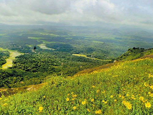 Agumbe's  bewitching beauty