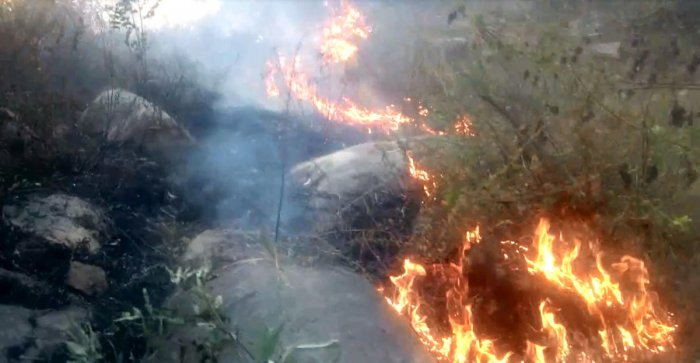 Fire at Turahalli forest in Bengaluru on Wednesday.