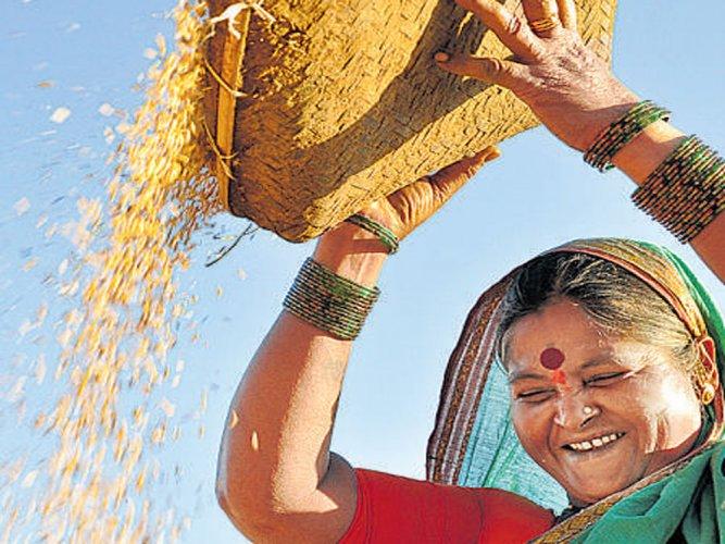 Food production in Karnataka set to fall 35% below target