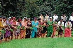 'Male habba' showcases rich culture of Kodavas