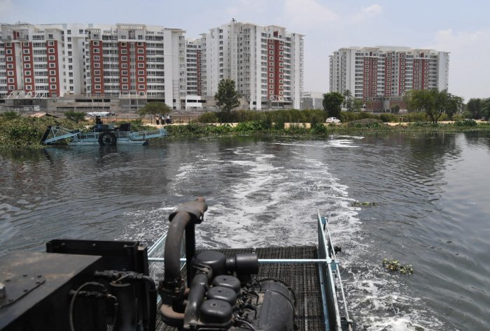 In February, the apex court issued an order reversing the National Green Tribunal's order to maintain a 75-metre buffer zone around lakes, which the Karnataka government had challenged in the court. (DH File Photo)