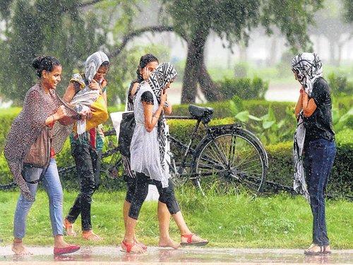 Delhiites bask in rain