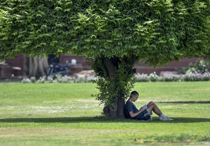 A man sits in the shade of a tree on a hot day, in New Delhi. PTI photo.