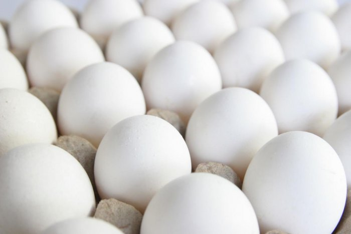 Proteins found in eggshell membranes have piezoelectric properties, that is, under mechanical stress they produce electricity, researchers said.