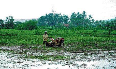 Heavy rain lashes Gadag