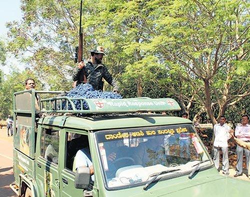 Tiger on Belagavi VTU campus triggers panic