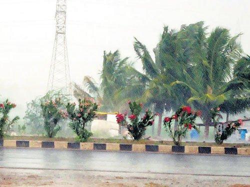 Heavy rain lashes Vijayapura, Gadag