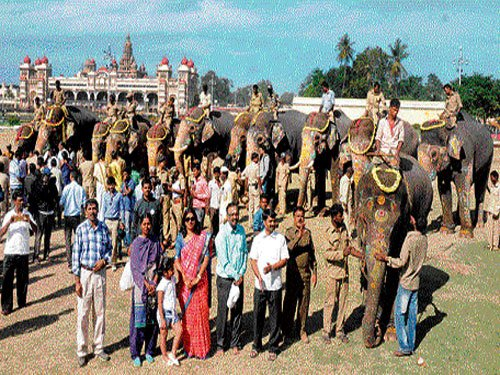 Dasara elephants return to forest camps