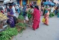 Chikmagalur ready to welcome new year-Ugadi
