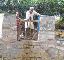 Bagalkot school teacher's very own oasis