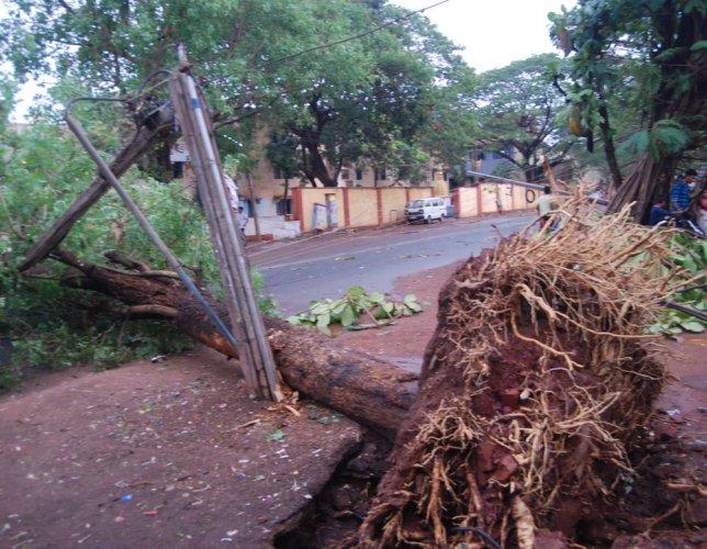 Rain in Hubballi, Belagavi brings relief
