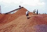 Suspend 18 illegal mines in Bellary, Centre tells State