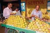 King of Fruits adorn Chikmagalur