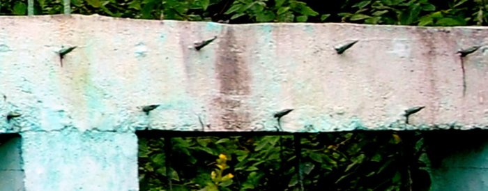 Sharp iron rods fixed to cement pillars to prevent jumbos from straying into villages.