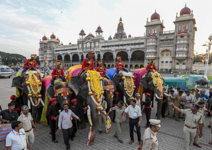 First batch of Dasara elephants enter the Mysore Palace ahead of the Mysore Dasara Festival, in Mysore. (PTI Photo)