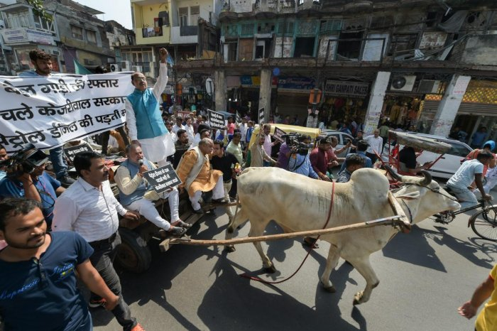 Union minister and BJP leader Vijay Goel rides a bullock-cart while participating in a protest against the Kejriwal government of Delhi for a cut in fuel prices by reducing VAT, in New Delhi, on Sunday. PTI