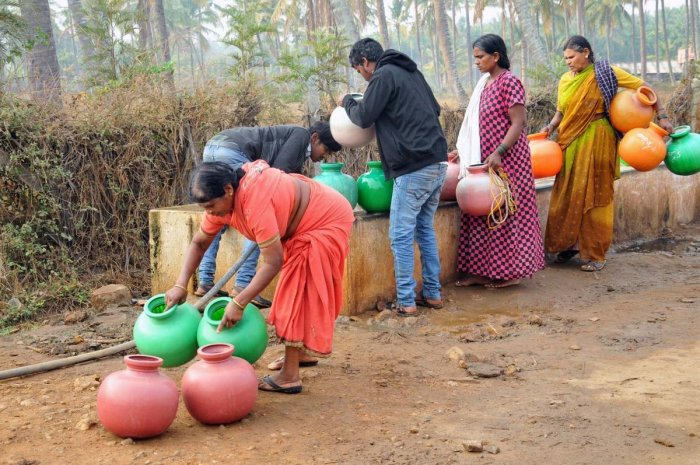 Villagers collect water from a cattle pond in Chikkamagaluru.