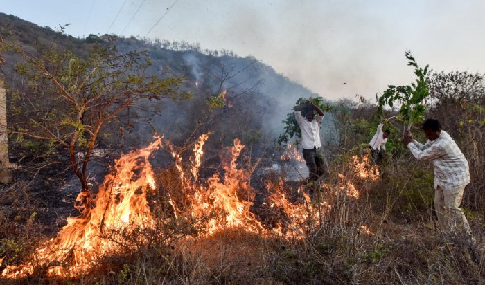 People try to douse fire at Chamundi Hill in Mysuru on Friday. Dh Photo