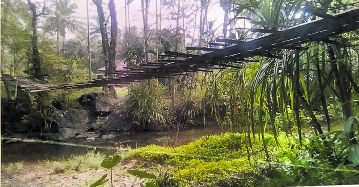 The footbridge made of bamboo and arecanut tree logs used by the residents to cross a stream at Mettutharu in Kombaru village.