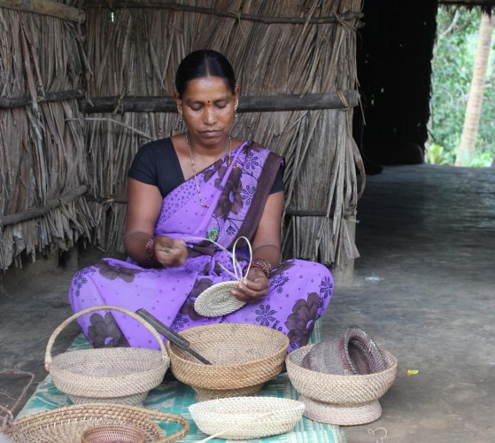 Aesthetic Maadi in Karooru village of Uttara Kannada district weaves utility items from forest vines; a forest vine; a product. photos by author