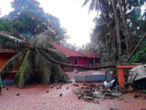 Lightning kills two farmers each in Haveri, Gulbarga