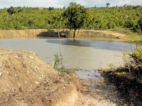 Tourists flock Bandipur as lakes fill to the brim