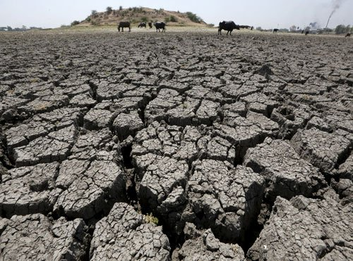 CPI calls for  all-party meet to discuss drought