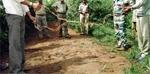 45 snares detected in Bandipur
