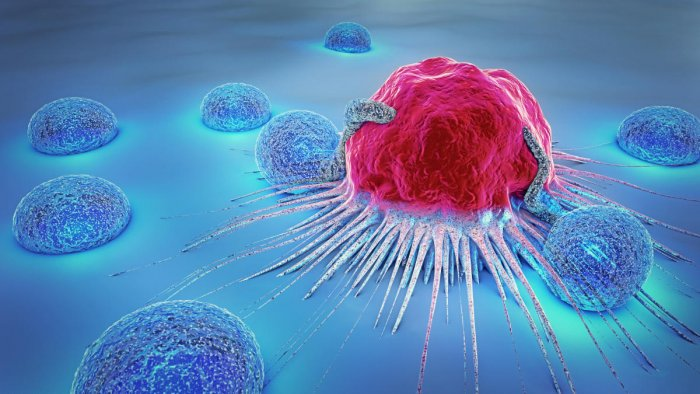 3d illustration of a cancer cell. File photo for representation