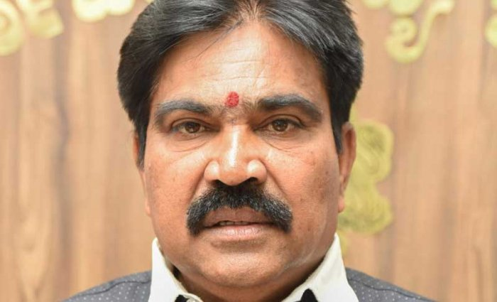 Forest Minister Shankar. DH file photo.