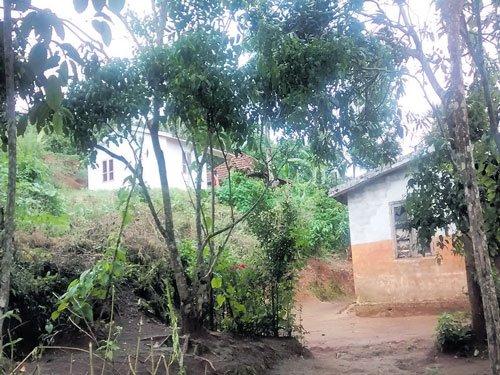 Miseries of unwed adivasi mothers in Wayanad