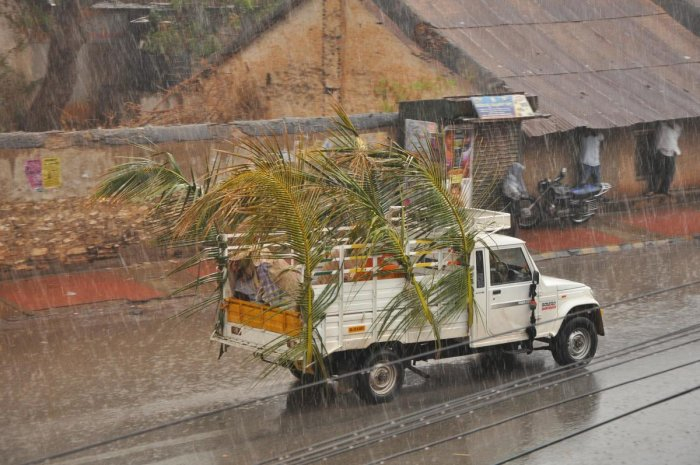 Heavy rainfall lashed Gadag on Thursday evening bringing respite from the scorching heat. DH Photo