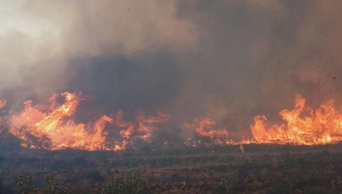 Fire at Boli Betta, under MM Hills Wildlife Sanctuary, in Hanur taluk, Chamarajanagar district.