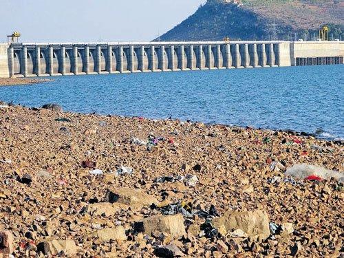 TN govt seeks Krishna water from Andhra Pradesh