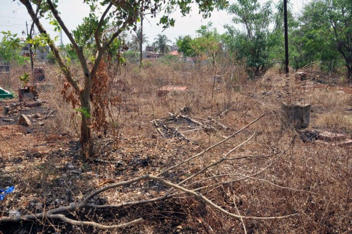 The crematorium at Ramanahalli in Chikkamagaluru is overrun by the growth of weeds.