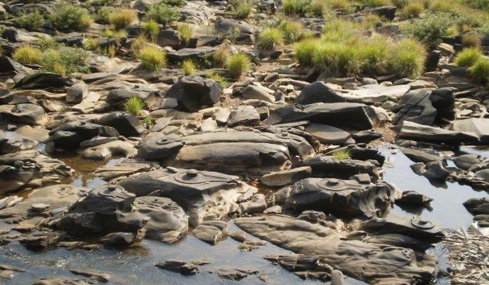 Sahasralinga near Sirsi. (photo by author)