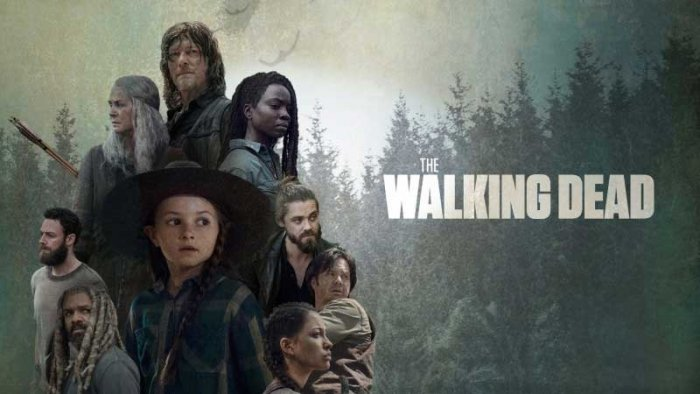 The series was created by chief content officer Scott M Gimple and TWD writer/producer Matt Negrete, who will act as showrunner.