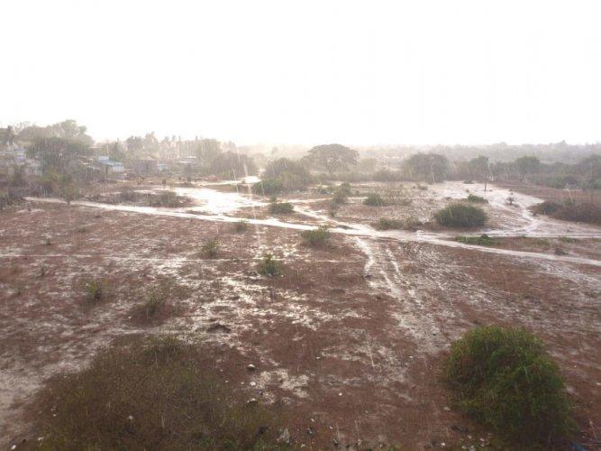 Rain lashed Lakshmipura village in Kolar taluk on Tuesday. DH Photo