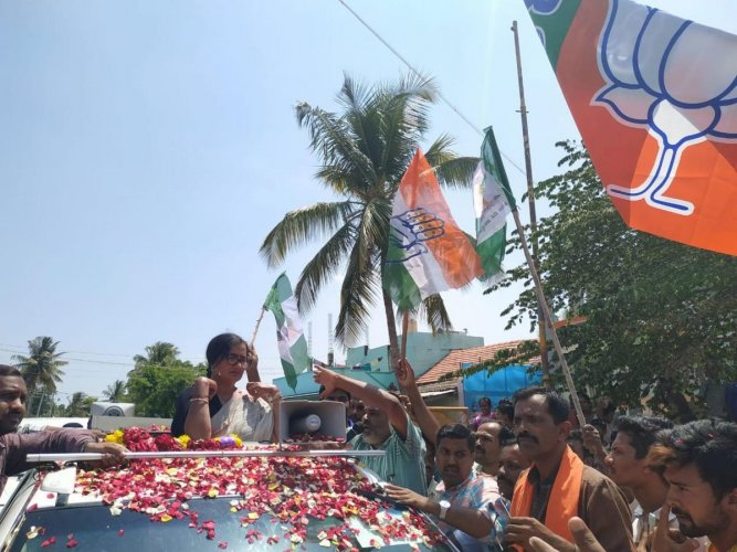 JD(S), Congress and BJP flags seen during the election campaign of Independent candidate A Sumalatha in Konapur, Malavalli taluk, Mandya district, on Saturday.