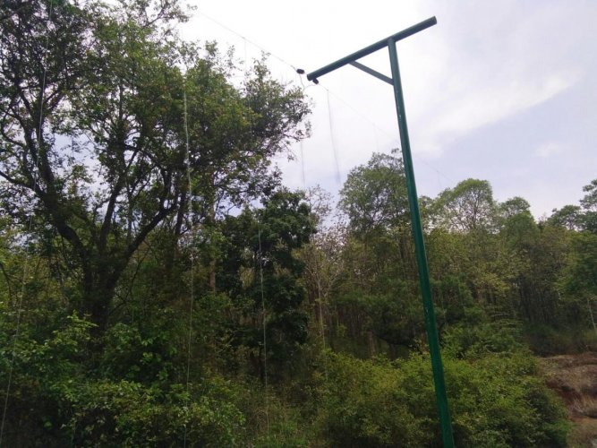 A view of the hanging solar fence installed on Devamacchi forest limits in Kodagu.