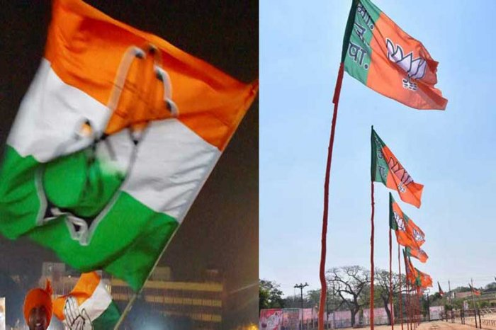 The BJP has topped the chart of political advertisers on Google with an advertisement spent share of around 32 per cent, while its rival Congress is ranked sixth with a meagre 0.14 per cent share.
